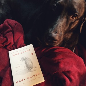 Lucy highly recommends Oliver's poetry.